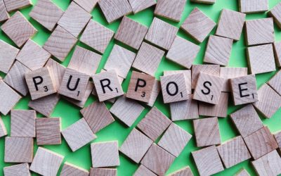 The importance of purpose
